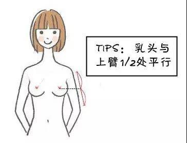 乳头矫正手术多少钱