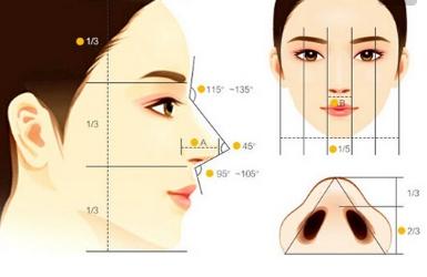 上海有名的鼻子专家