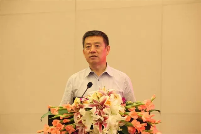 中国整形美容协会长张斌